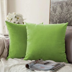 cushion cover parrot green